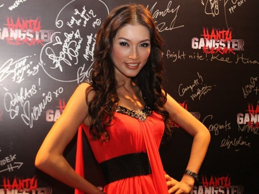 gangsterism in malaysia-essay