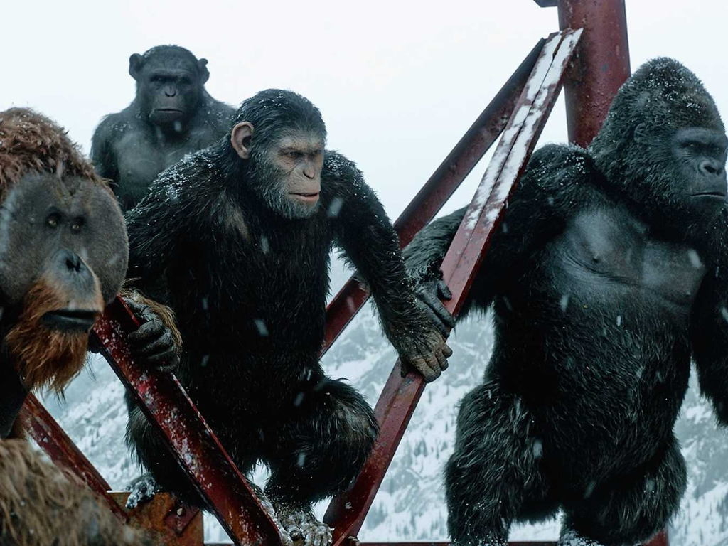 The apes are rising again!