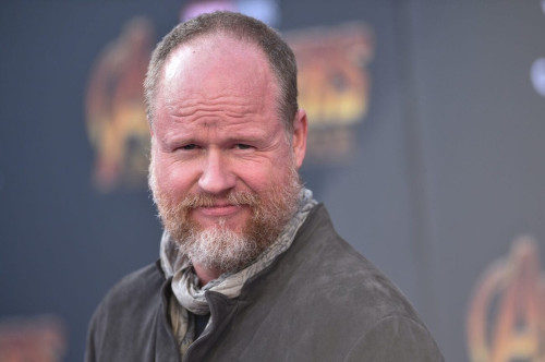 Fans were unhappy with Joss Whedon's take on the franchise earlier.